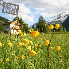 Over het Proefhotel